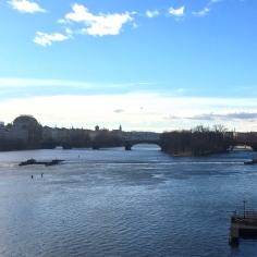 pont charles31